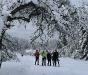 Javorníky - zimná idylka na Kysuciach (autor: Johny)